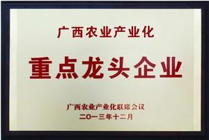 荣获广西农业财产化重点龙头企业
